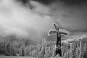 A cross built as a memorial to Craig Kelly, who died in an avalanche while snowboarding in 2003