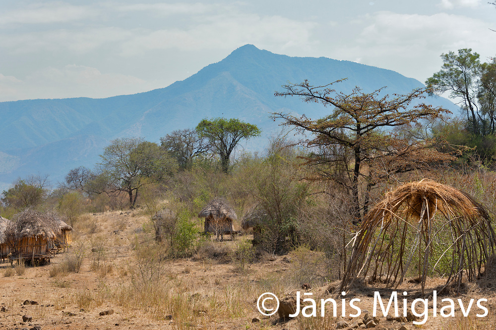 Huts of temporary Mursi tribe village in Mago National Park, Omo Valley, Ethiopia, Africa.
