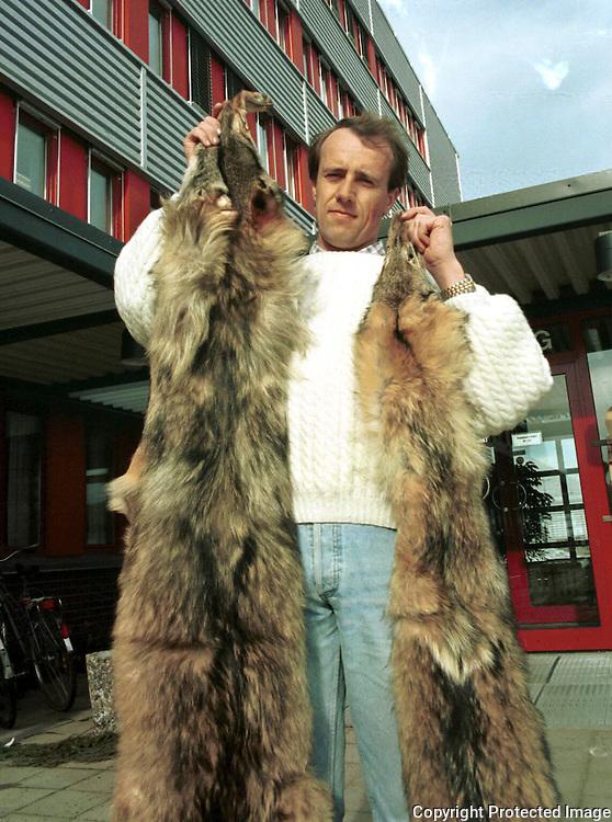 Øystein Størkersen, Direktoratet for naturforvaltning, med beslagslagte ulveskinn (ulovlig innført)