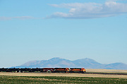 BNSF train with oil tank cars travels across the Great Plains of Montana with the Sweetgrass Hills in the background.