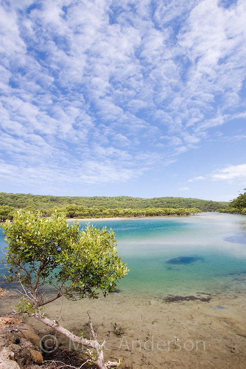 Coastal estuary on the Port Hacking River, Royal National Park, Sydney, Australia