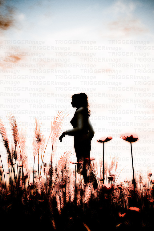 A single young woman standing in a corn field with poppies