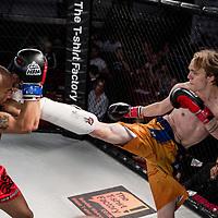 Lion Fight Championship 13