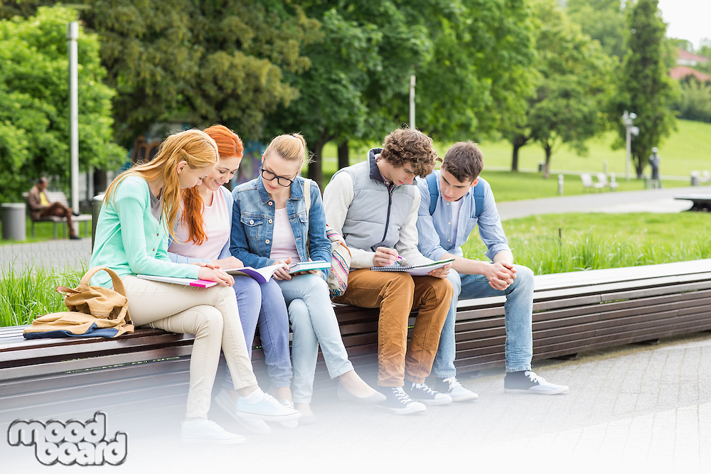 University students studying while sitting on low wall in park