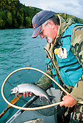 Alaska. Kenai Peninsula. Kenai River. Fly fisher with dolly varden char. Driftboating.
