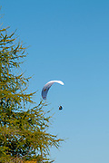 Paragliding with blue sky background from the summit of Elfer mountain down to Neustift im Stubaital, Tyrol, Austria