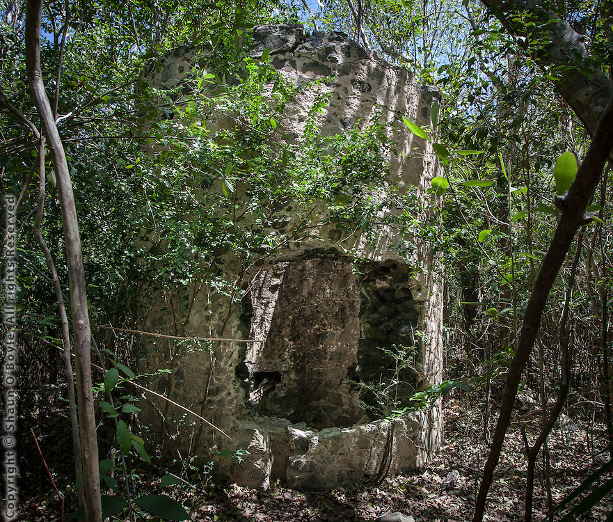 Well, Fredriksdal Ruin, St John, USVI