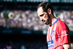 February 3, 2019 - Sevilla, Andalucia, Spain - Juanfran of Atletico de Madrid looks on  during the LaLiga match between Real Betis vs Atletico de Madrid at the Estadio Benito Villamarin in Sevilla, Spain. (Credit Image: © Javier MontañO/Pacific Press via ZUMA Wire)