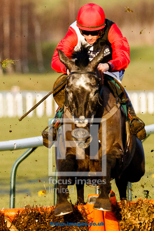 Sam Twiston-Davies on Saphir du Rheu (Black/White/red) en route to winning the galliardhomes.com Cleeve Hurdle during the Cheltenham Festival Trials at Cheltenham Racecourse, Cheltenham<br /> Picture by Mark Chappell/Focus Images Ltd +44 77927 63340<br /> 24/01/2015