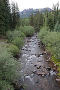 Rio Grande headwaters, Rio Grande National Forest, Colorado.