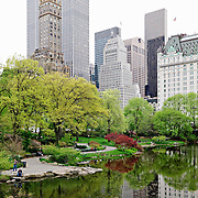 The Pond in New York's Central Park in the spring, with buildings in the background