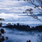 Morning Mists, form in the cold of a winter's dawn, North West Bay, and River Derwent, Tasmania, Australia