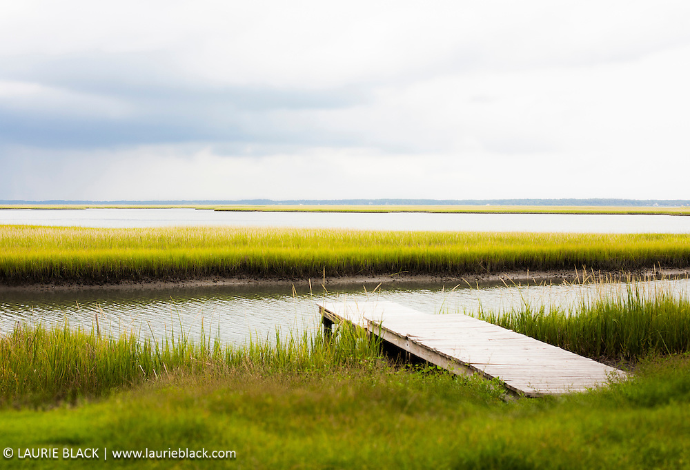 North Carolina low country marsh