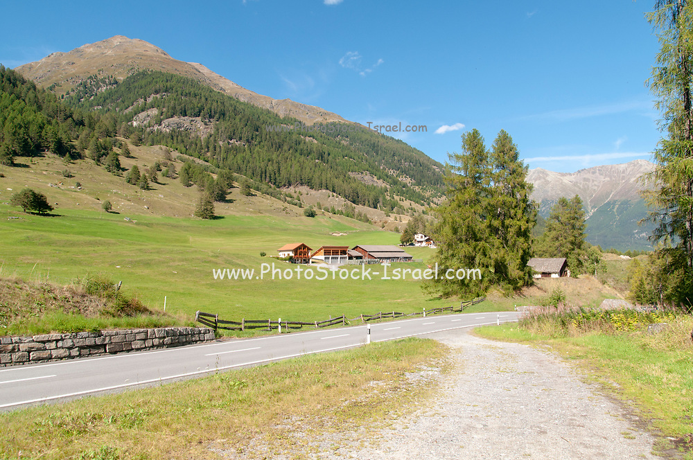 Zernez is a village and a municipality in the Engiadina Bassa/Val Müstair Region in the Swiss canton of Graubünden.