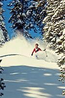Northstar Skier