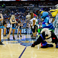 Mar 22, 2013; New Orleans, LA, USA; New Orleans Hornets Honeybees perform in a dance off against mascots during halftime of a game against the Memphis Grizzlies at the New Orleans Arena.  Mandatory Credit: Derick E. Hingle-USA TODAY Sports