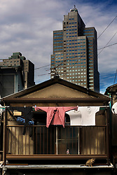Japan, Tokyo.<br /> Clothes are hanging in a small street in Tokyo.&copy; Carmen Secanella.