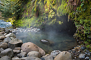 Deer Creek Hot Springs on the McKenzie River, Willamette National Forest, Oregon.