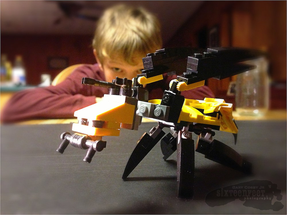 Gary Cosby Jr.  iPhone photographs  A child looks at his Lego wasp creation.