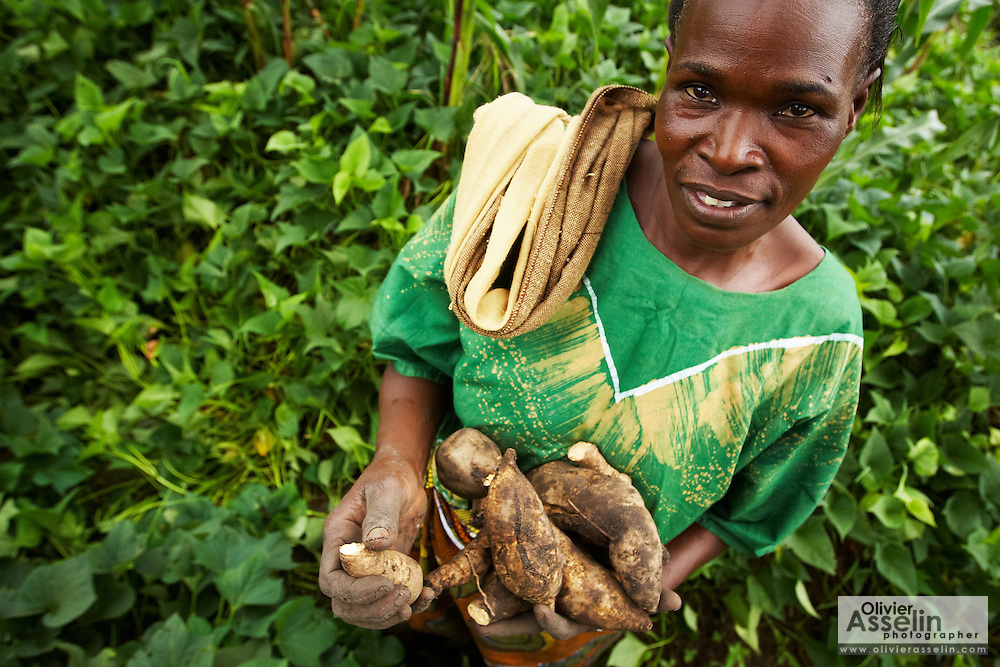 Maria Mchele holds freshly-harvested sweet potatoes on a farm run by a local farmer's group in the village of Mwazonge, roughly 30km southwest of Mwanza, Tanzania on Sunday December 13, 2009..