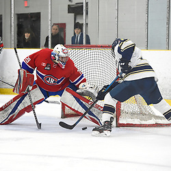TORONTO, ON - JANUARY 5: Christian Mattiace #29 of the Toronto Jr. Canadiens protects the crease in the third period on January 5, 2019 at Westwood Arena in Toronto, Ontario, Canada.<br /> (Photo by Andy Corneau / OJHL Images)