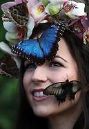 UK - Butterflies Sit On Models Face - 13 Jan 2017