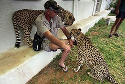 NAMIBIA KAMANJAB 27APR14 - Visitors encounter tame Cheetahs at the Ojitotongwe Cheetah farm near Kamanjab, Namibia.<br /> <br /> <br /> <br /> jre/Photo by Jiri Rezac<br /> <br /> <br /> <br /> &copy; Jiri Rezac 2014