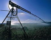 Idaho, Rathdrum Prairie, irrigation