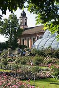 Insel Mainau, Schlosspark, italienischer Rosengarten, Palmenhaus und Schlosskirche, Bodensee, Baden-Württemberg, Deutschland.. | ..Isle of Mainau, palace garden, Lake Constance, Germany