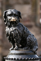 Detail of famous bronze statue of Greyfriars Bobby dog beside Greyfriars Kirkyard in Edinburgh Old Town, Scotland ,UK