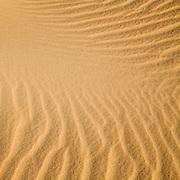 Sahara Sands XII (Western Desert, Egypt)