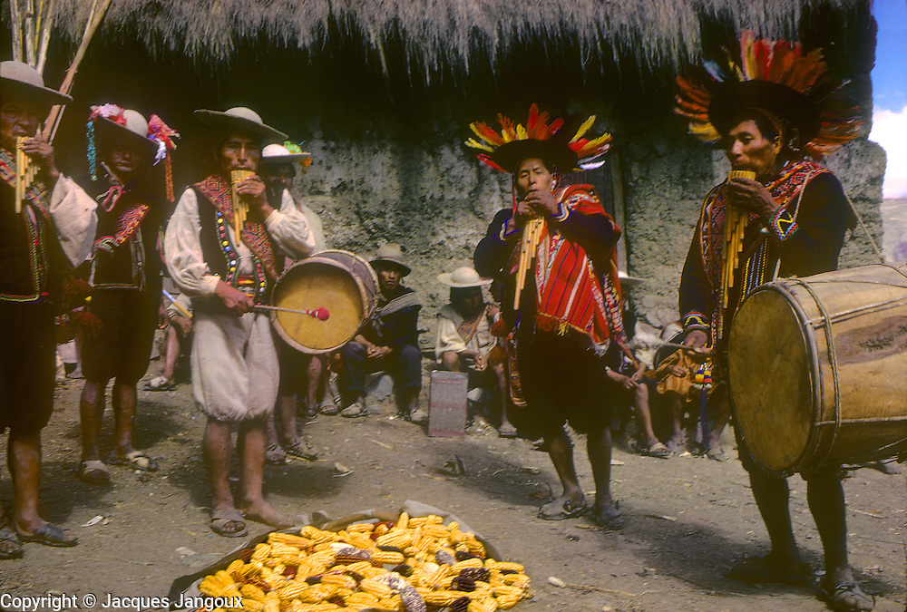 South America, Bolivia. Maize harvest festival in a hamlet of Ayata, running parallel to the Corpus Christi celebrations in the town (Departamento La Paz, Provincia Munecas): men playing siku (panpipe, zampoña) flute and bombo drum.