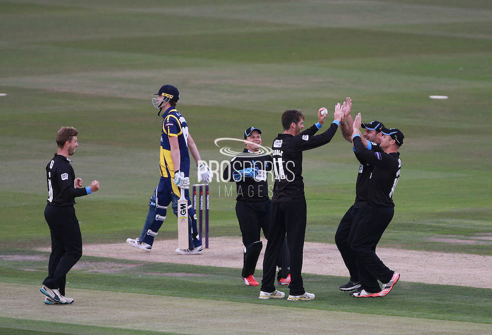 Chris Liddle celebrates after taking the wicket of Aneurin Donald during the NatWest T20 Blast South Group match between Sussex County Cricket Club and Glamorgan County Cricket Club at the BrightonandHoveJobs.com County Ground, Hove, United Kingdom on 10 July 2015. Photo by Bennett Dean.