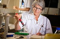 P&aring; billedet:<br /> Kirsten Bank, Bioanalytiker<br /> Vi har interviewet overl&aelig;ge Peter Meldgaard fra onkologisk afd og professor Boe Sandahl S&oslash;rensen fra klinisk biokemisk afd. De har gennem 7-8 &aring;r samlet blodpr&oslash;ver fra lungekr&aelig;ftpatienter, og de ligger nu i et k&aelig;lderrum i fire store fryseskabe. De har ogs&aring; skaffet fondsmidler til det sekventeringsudstyr, som er n&oslash;dvendigt for at kunne lave DNA-analyser af blodpr&oslash;ver.