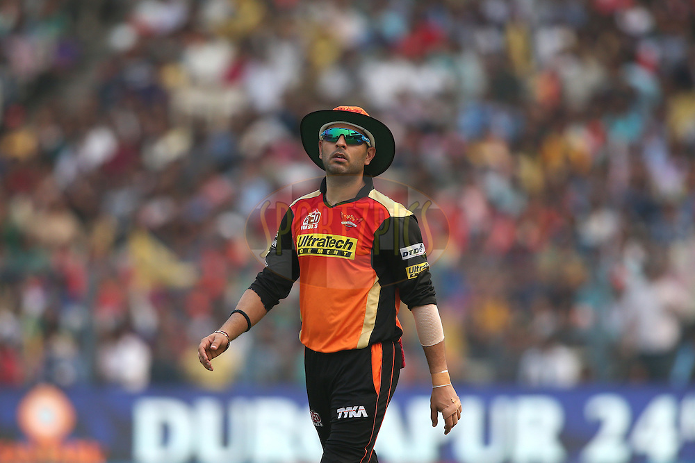 Yuvraj Singh of Sunrisers Hyderabad during match 55 of the Vivo Indian Premier League (IPL) 2016 between the Kolkata Knight Riders and the Sunrisers Hyderabad held at the Eden Gardens Stadium in Kolkata on the 22nd May 2016<br /> <br /> Photo by Shaun Roy / IPL/ SPORTZPICS