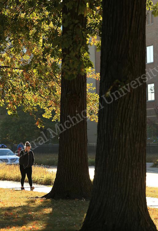Fall Color scenics October 2013. Central Michigan University photo by Steve Jessmore