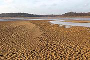 Benacre national nature reserve, North Sea coast, Suffolk, England, UK lagoon