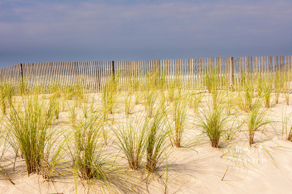 Coastal sand dunes and fencing, Praia de Costa Nova, Aveiro, Portugal