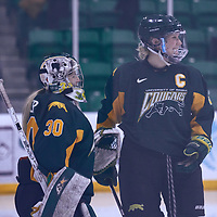 5th year forward, Emma Waldenberger (9) of the Regina Cougars during the Women's Hockey Away Game on Fri Jan 11 at Merlis Belsher Place. Credit: Arthur Ward/Arthur Images