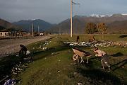 kids playing beside rubbish dump. Duisi, Republic of Georgia.