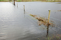 Submerged fence posts