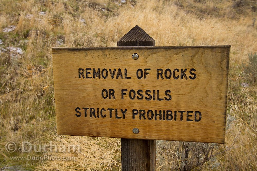 A sign forbidding removal of rocks or fossils at the Blue Basin feature of the John Day Fossil Beds National Monument; Oregon. Formed from 29-million-year-old volcanic tuff, The erosion scarred slopes of these hills are slowly yielding fossils of ancient animals and plants.