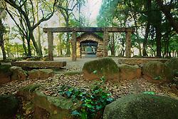 O Parque Farroupilha, também conhecido como Parque da Redenção, é o parque mais tradicional e popular de Porto Alegre, sendo um local tradicionalmente visitado pelos porto-alegrenses nas horas de descanso, seja para praticar esportes ou simplesmente tomar um chimarrão com a família. Fazem parte do conjunto paisagístico árvores, ciprestes e arbustos esculpidos, sugerindo ao visitante a bela paisagem da velha Europa. FOTO: Jefferson Bernardes/Preview.com