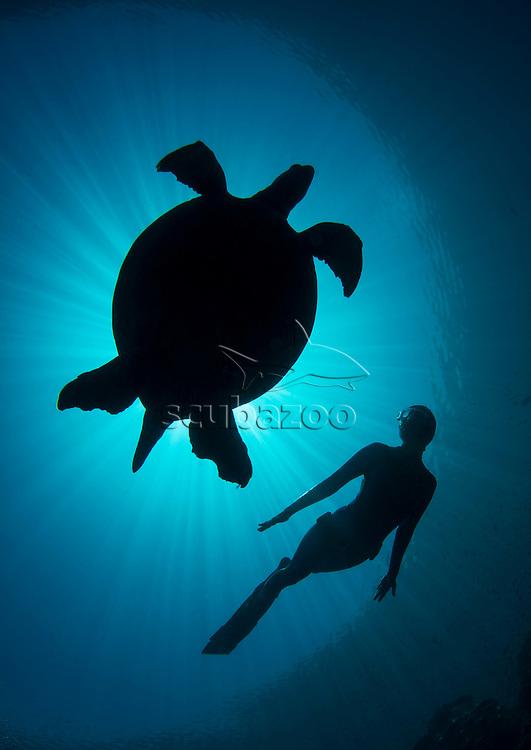Free diver, Ai Futaki, swimming with sea turtle, silhouetted, Sipadan, Sabah, Malaysia