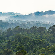 Panoramic view of the forests of Pang Sida national park. Please note the size of the image.