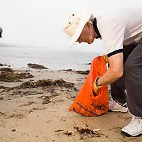 Save our Shores volunteers cleaning up beach garbage, Main Beach, Santa Cruz, Monterey Bay, California