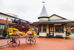The still operating New Hope and Ivyland Railroad station, New Hope, Pennsylvania, USA
