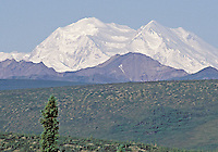 The northside of Mt. Mckinley taken from the Savage River Campsite on the Denali Wilderness Road, Alaska