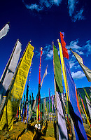 Prayer flags in hills above Thimpu, Bhutan