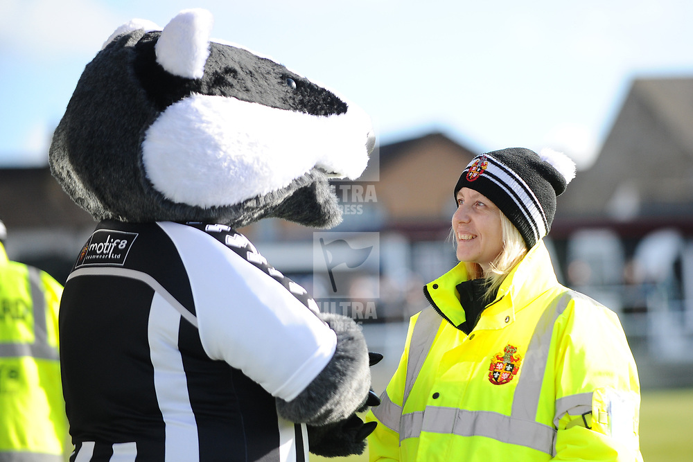 TELFORD COPYRIGHT MIKE SHERIDAN Spennymoor steward chats to a badger during the Vanarama Conference North fixture between Spennymoor Town and AFC Telford United at Brewery Field, Spennymoor on Saturday, February 29, 2020.<br /> <br /> Picture credit: Mike Sheridan/Ultrapress<br /> <br /> MS201920-048